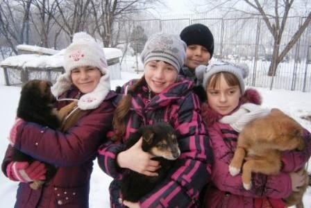 Юннаты и щенки