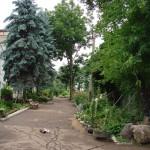 Территория юннатки