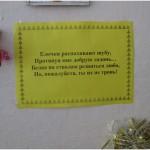 Акция «Защитим ёлочку!» 2011