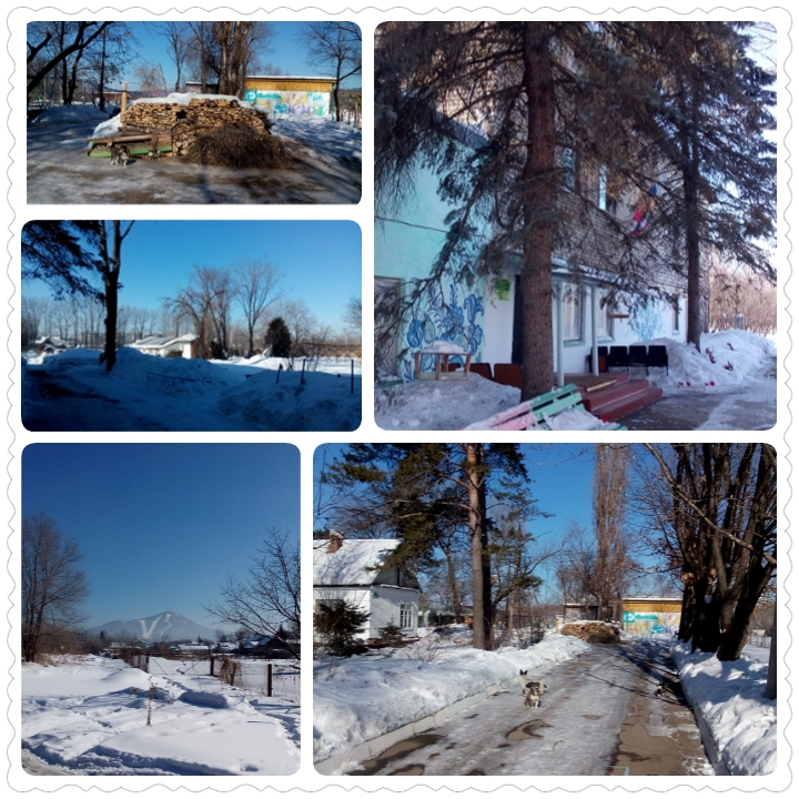 Зима на юннатке